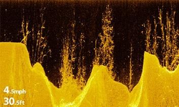 Helix DI sonar